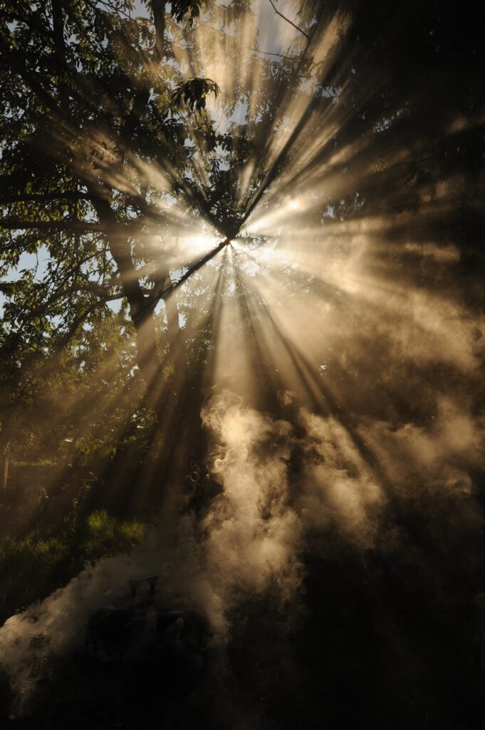 Sunlight shafts through through mist, smoke and trees